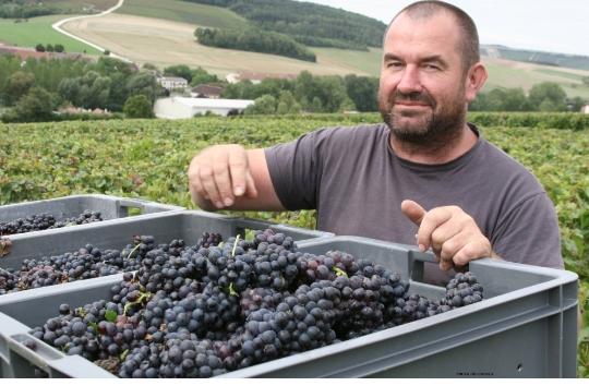 olivier-devritry-un-champagne-elabore-au-coeur-de-la-cote-des-bar-vignoble